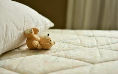 突变的神经肽S受体可减少睡眠时间并保持记忆巩固
